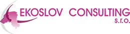 E-consulting Logo